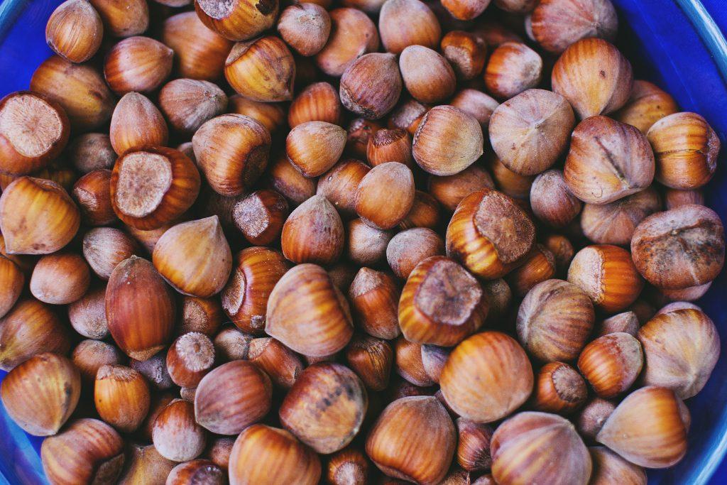 Hazelnuts - free stock photo