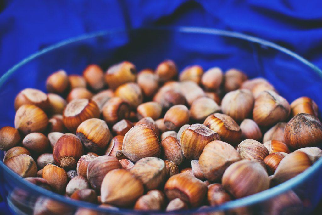 Bowl of hazelnuts - free stock photo