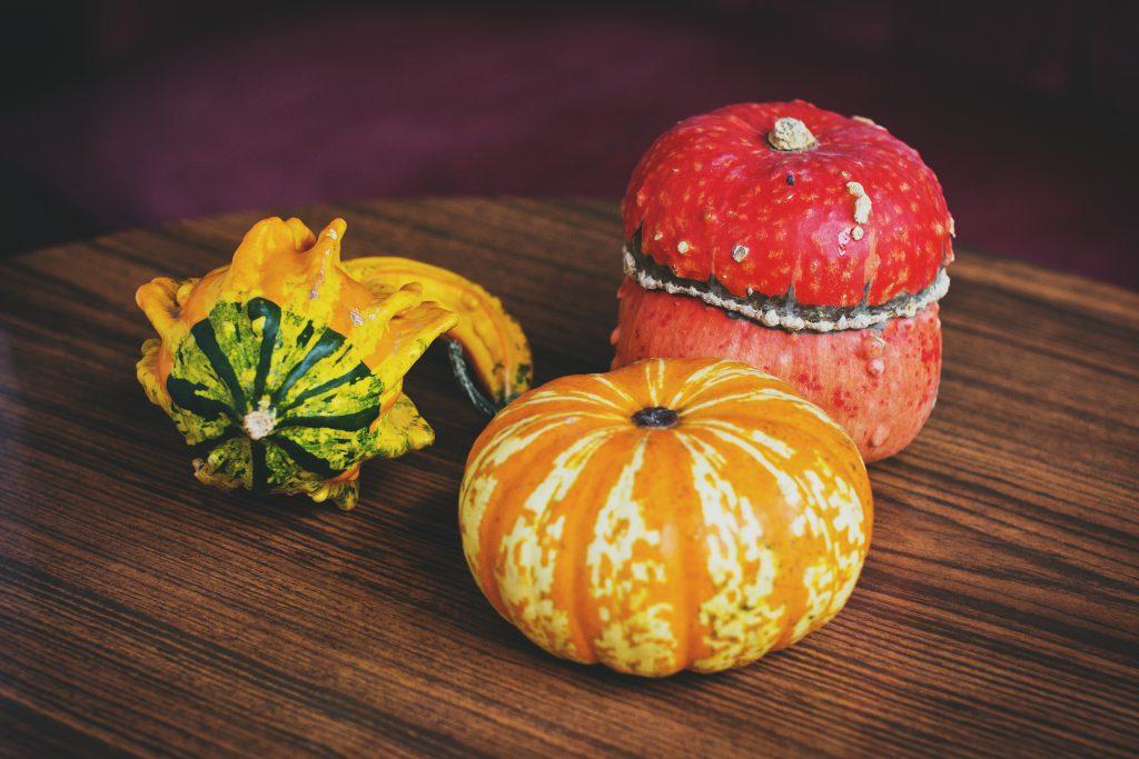 Pumpkins - free stock photo
