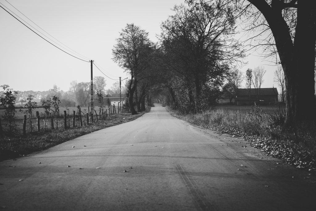 Country road - free stock photo