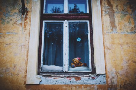 Teddy bear in the window - free stock photo