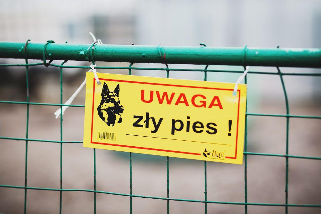 Warning! Bad dog! - free stock photo