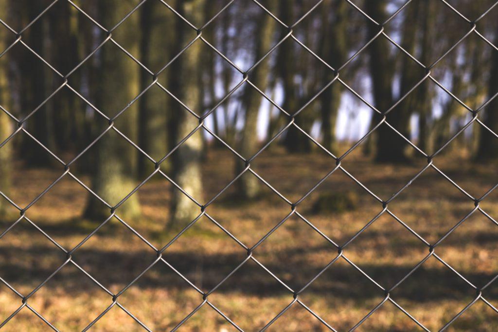 Fence - free stock photo