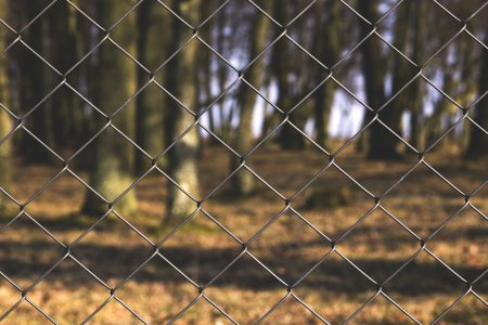 Fence - free stock photo