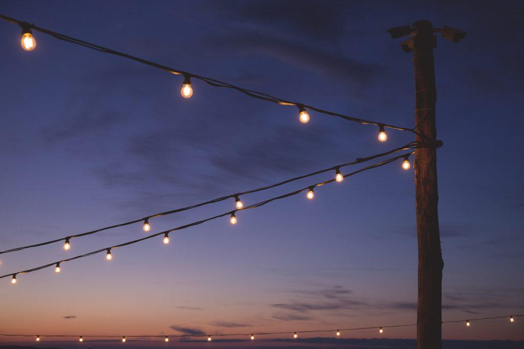 Light bulbs - free stock photo