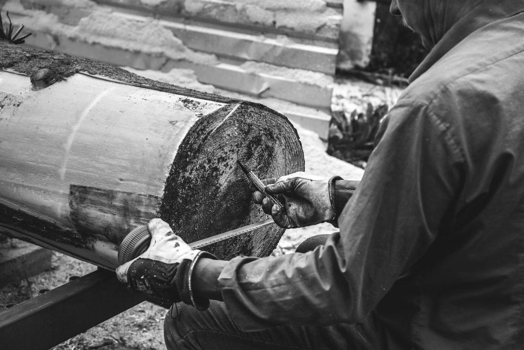 Man measuring tree trunk - free stock photo
