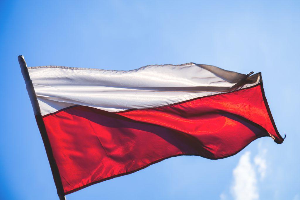 Polish flag - free stock photo