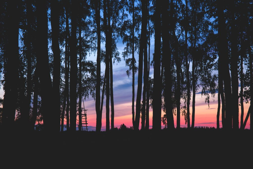 Sky at dusk 3 - free stock photo