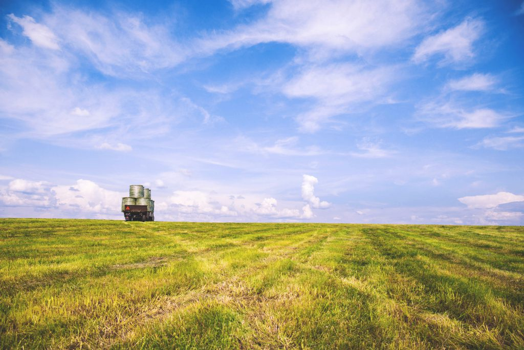 Work in the field 2 - free stock photo