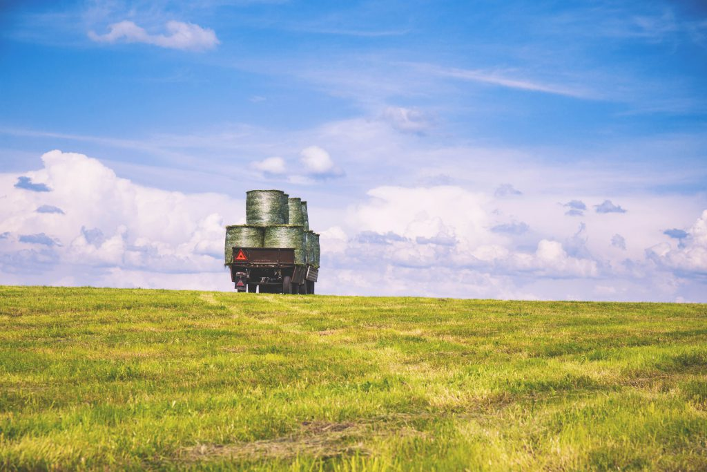 Work in the field 3 - free stock photo