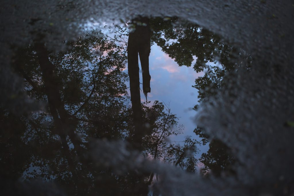 Reflection in the puddle - free stock photo