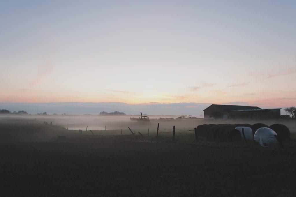 Evening mist - free stock photo