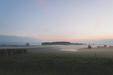 Evening mist 3 - free stock photo