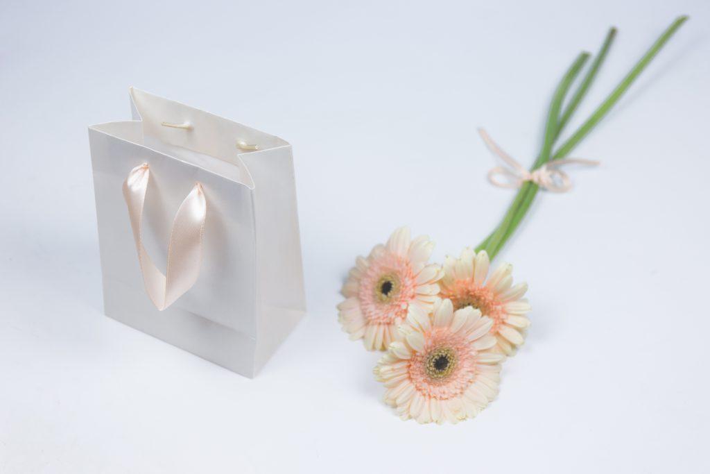 Gift bag - free stock photo