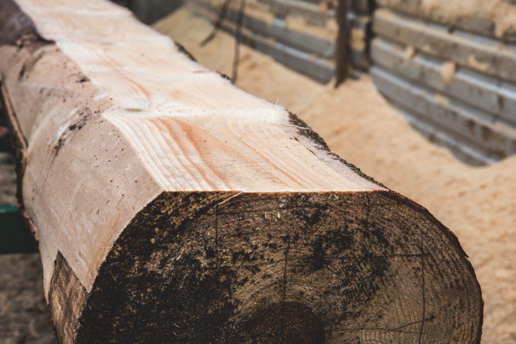 Timber - free stock photo