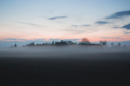 Evening mist 4 - free stock photo