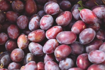 Plums - free stock photo