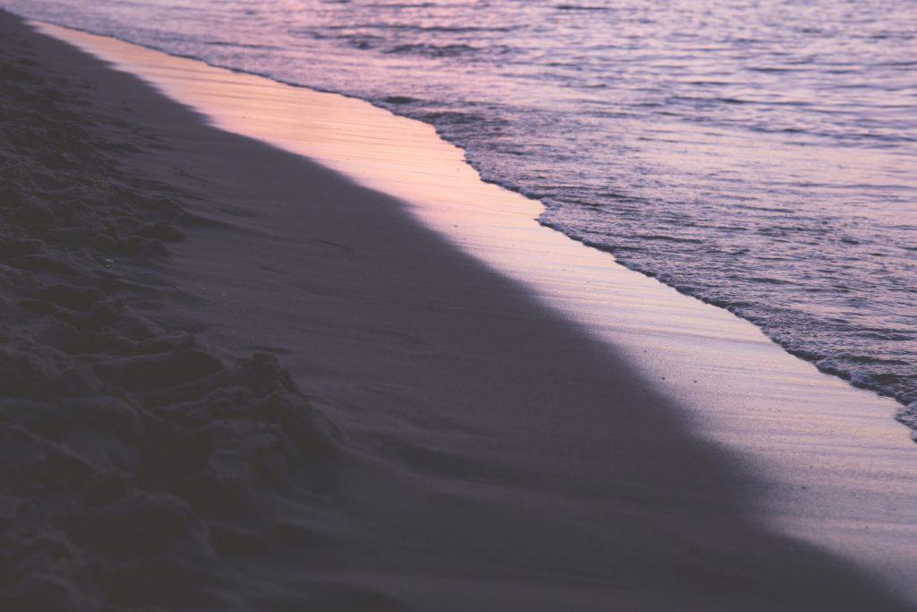Seashore at sunset - free stock photo
