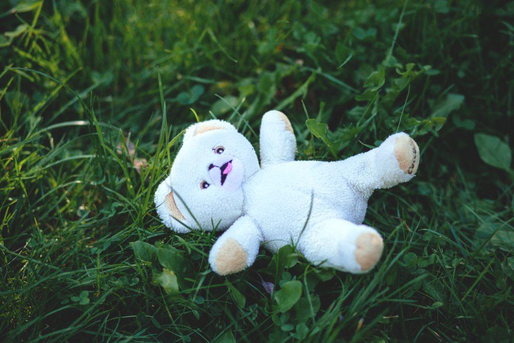 Teddy bear in grass - free stock photo