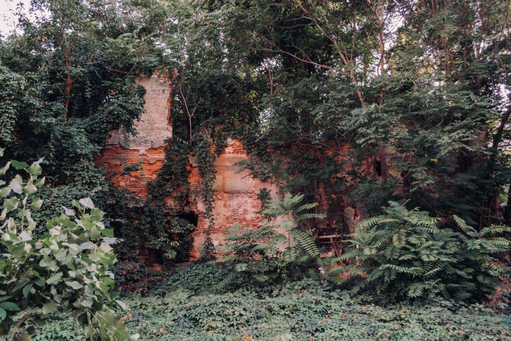 Abandoned ruined house - free stock photo