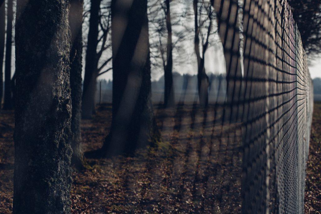 Fence 2 - free stock photo