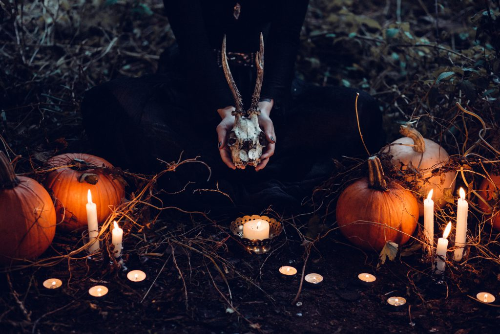 Spooky Halloween scene - free stock photo