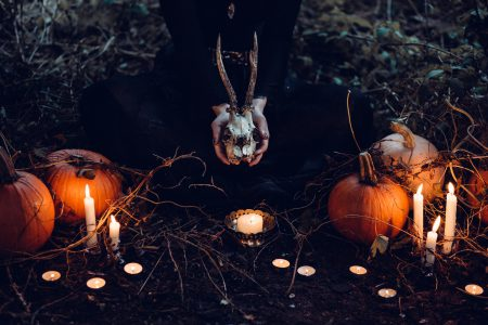 Spooky Halloween scene - free stock photo