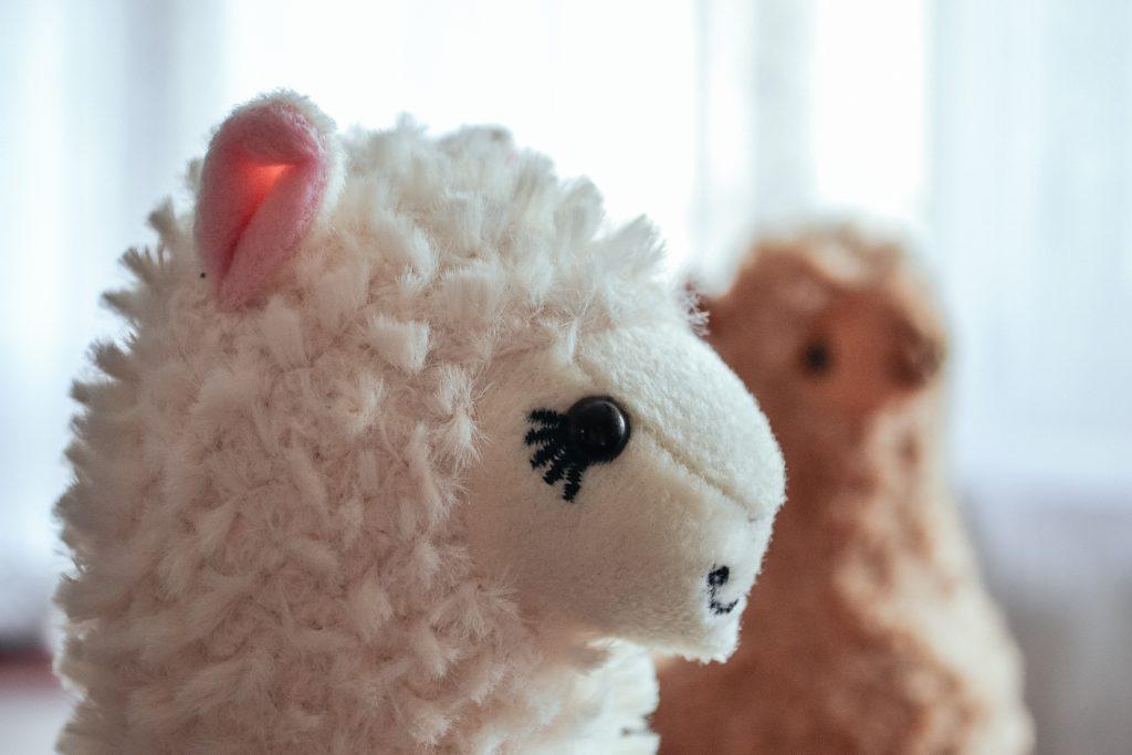 Plush alpacas 2 - free stock photo