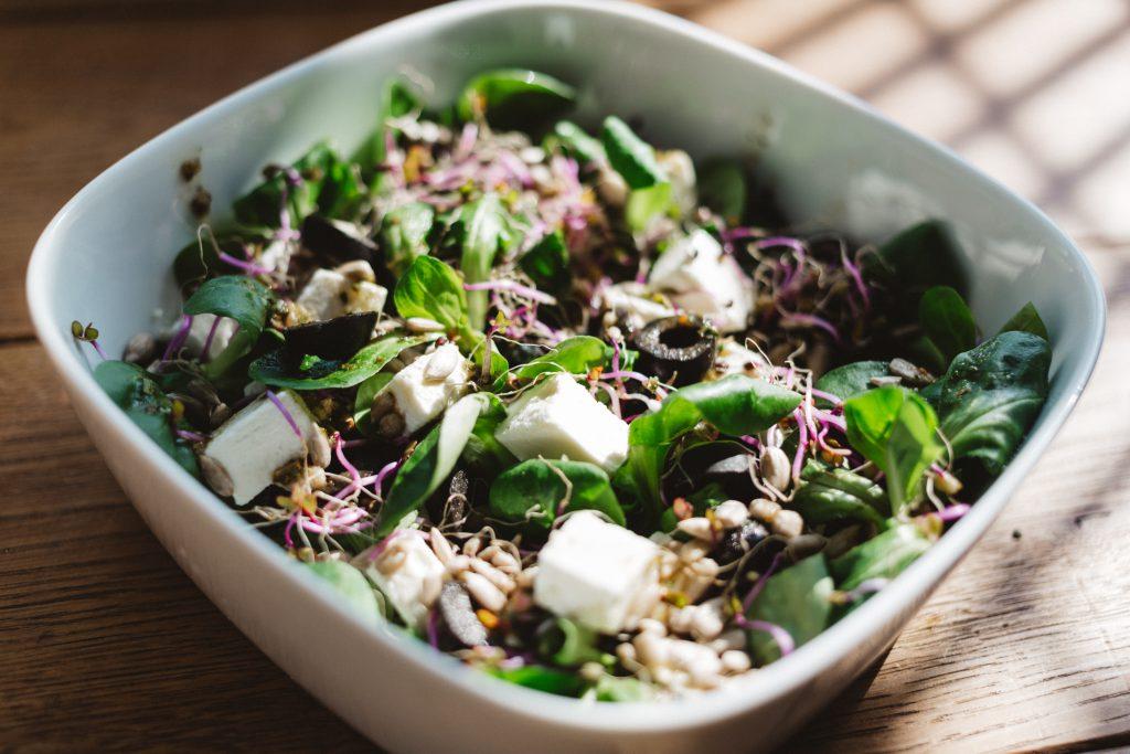 Salad 4 - free stock photo