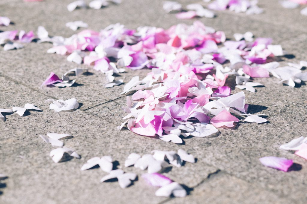 Butterfly confetti - free stock photo