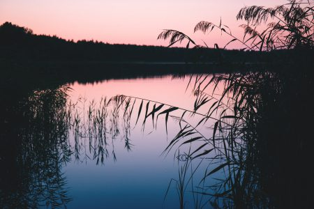 Late sunset at the lake 2 - free stock photo