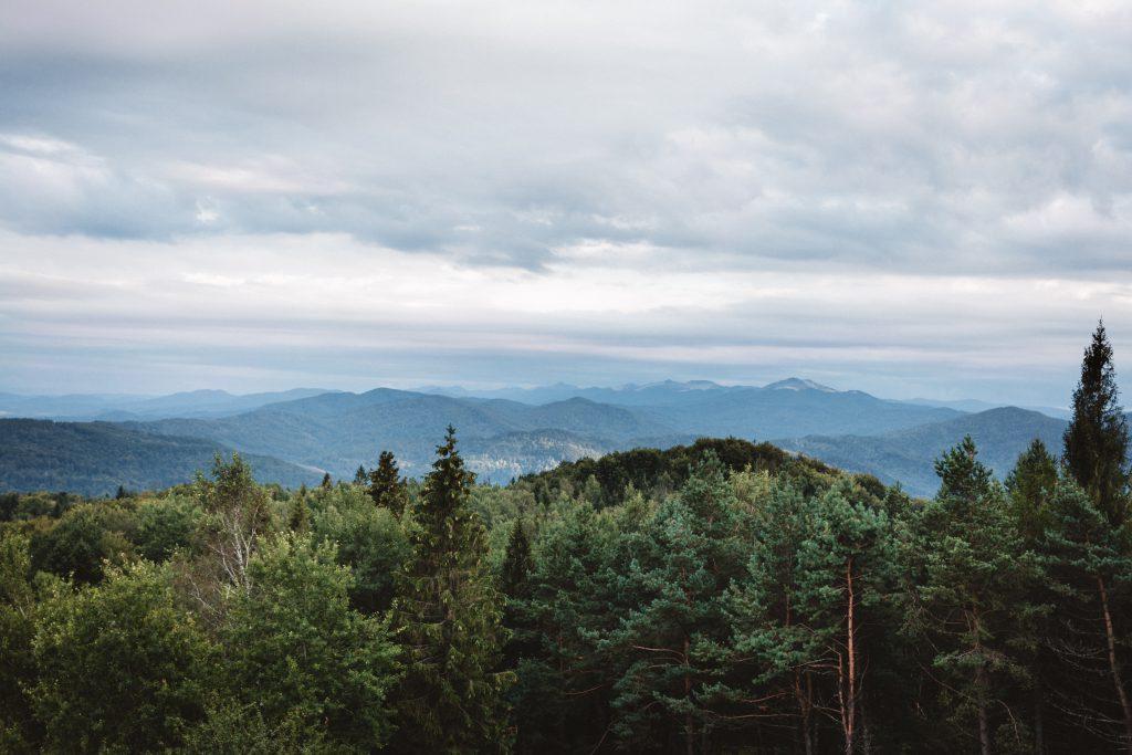 Bieszczady Mountains - free stock photo