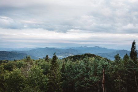 Bieszczady Mountains - free stock photo