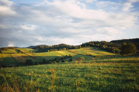 Fields in Bieszczady Mountains