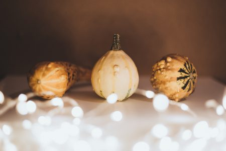 Halloween mini pumpkins - free stock photo