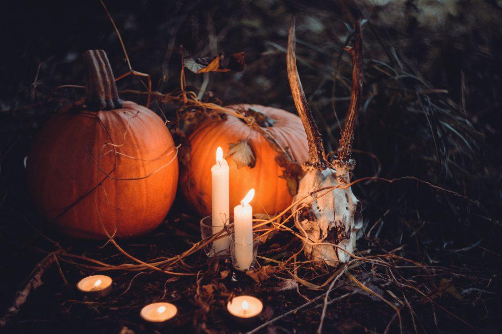 Spooky halloween decoration 2 - free stock photo