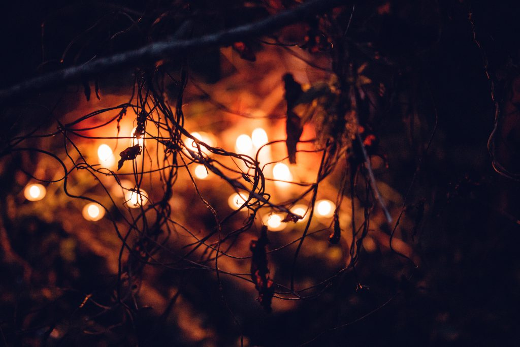 Spooky halloween decoration in the bushes - free stock photo