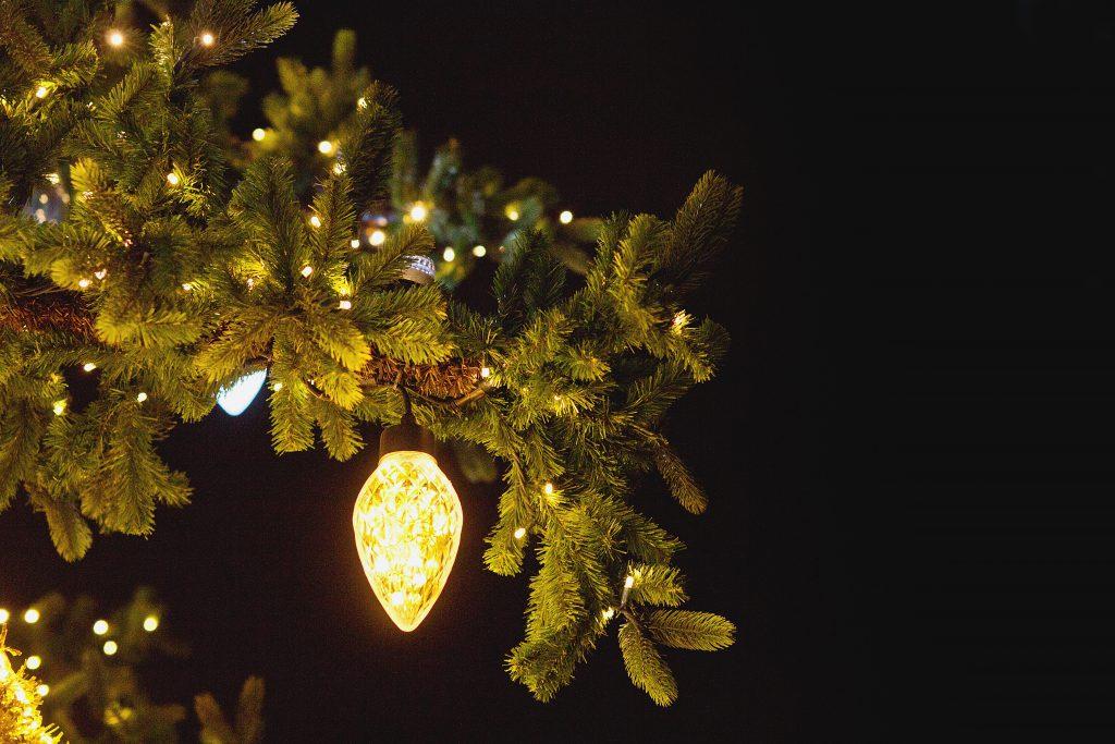 Christmas bulb outdoors - free stock photo