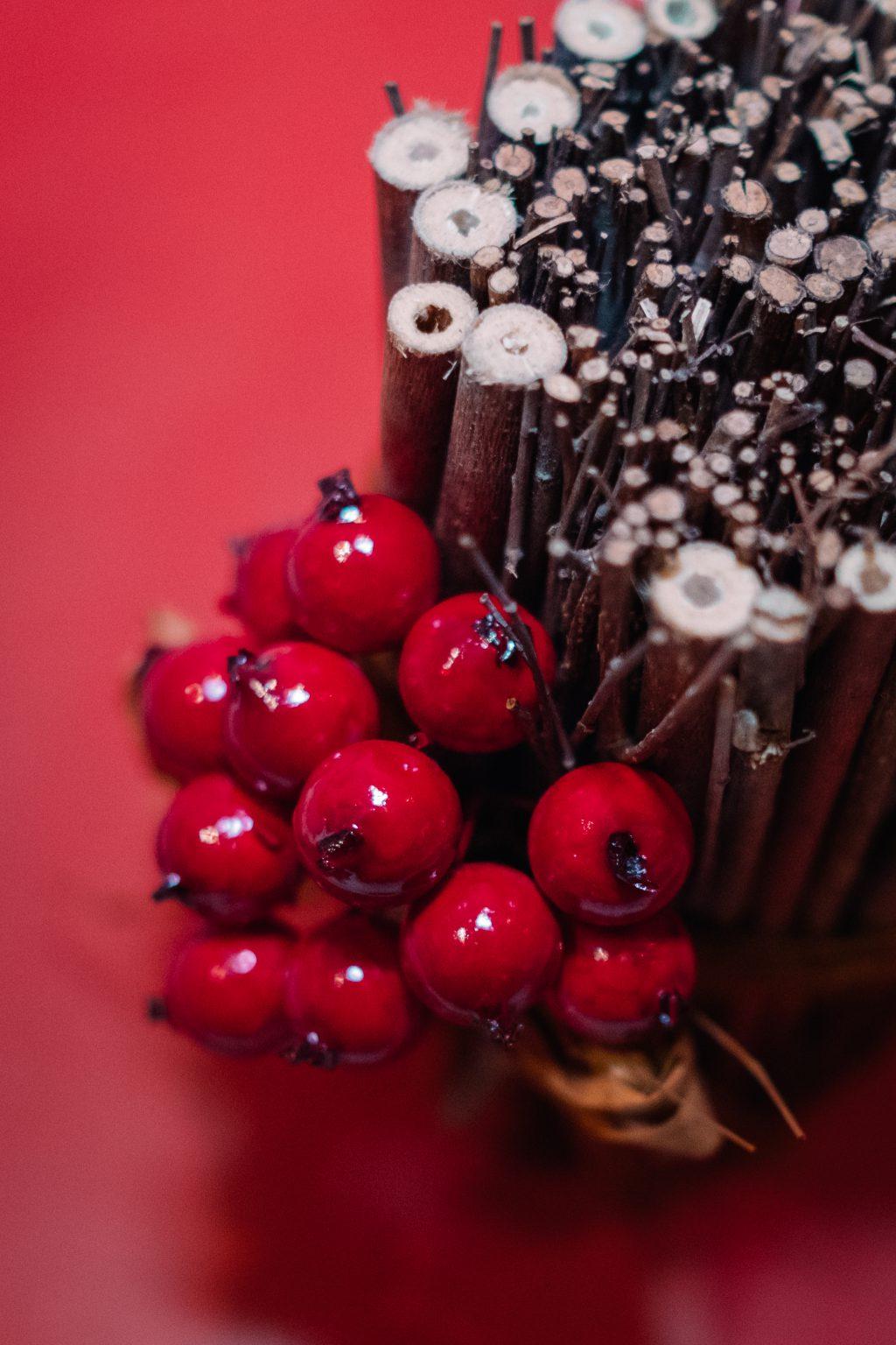 Christmas holly fruit decoration - free stock photo