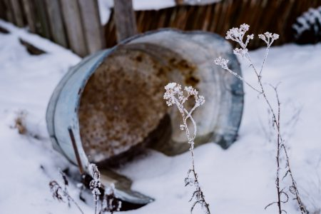 Frozen water in a rusted metal tub