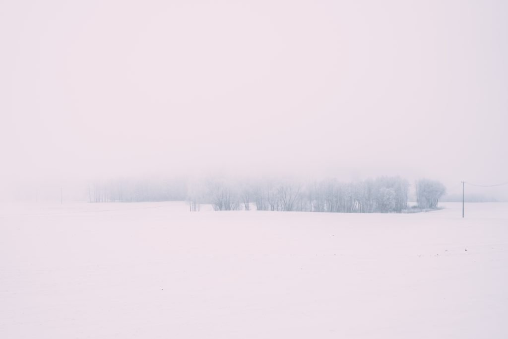 Foggy winter day in the field 2 - free stock photo