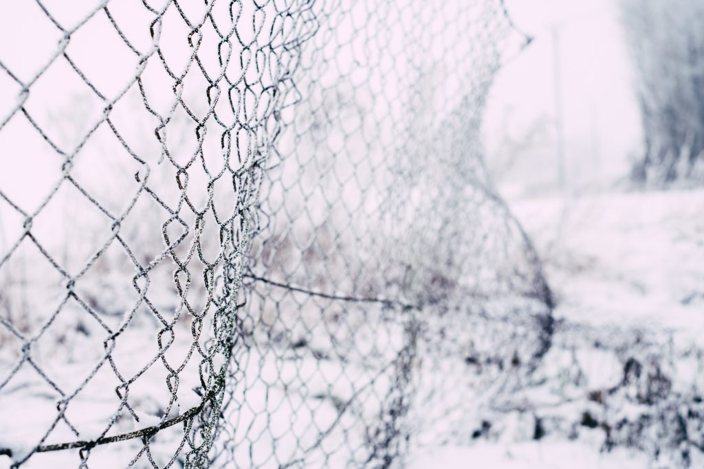 Frosted old net fence - free stock photo