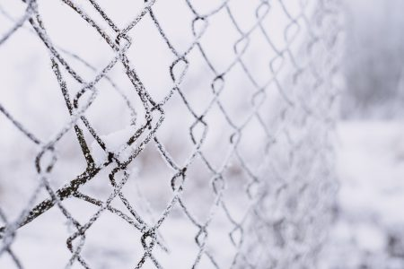 Frosted old net fence 2 - free stock photo