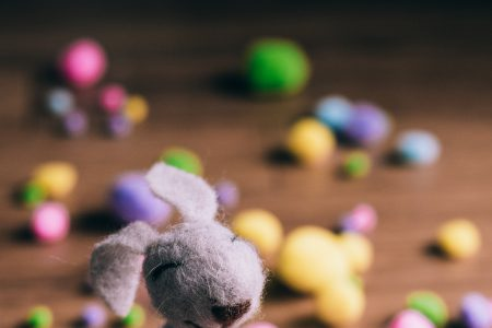 Easter bunny 7 - free stock photo