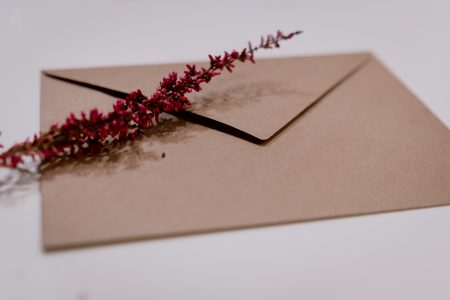 Craft envelope with dried flower - free stock photo