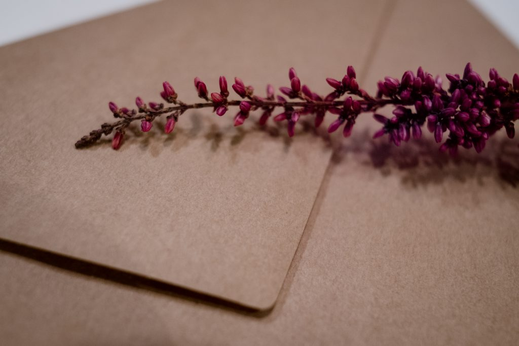 Craft envelope with dried flower closeup 2 - free stock photo
