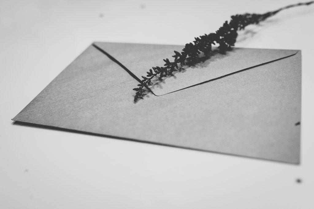 Craft envelope with dried flowers 2 - free stock photo