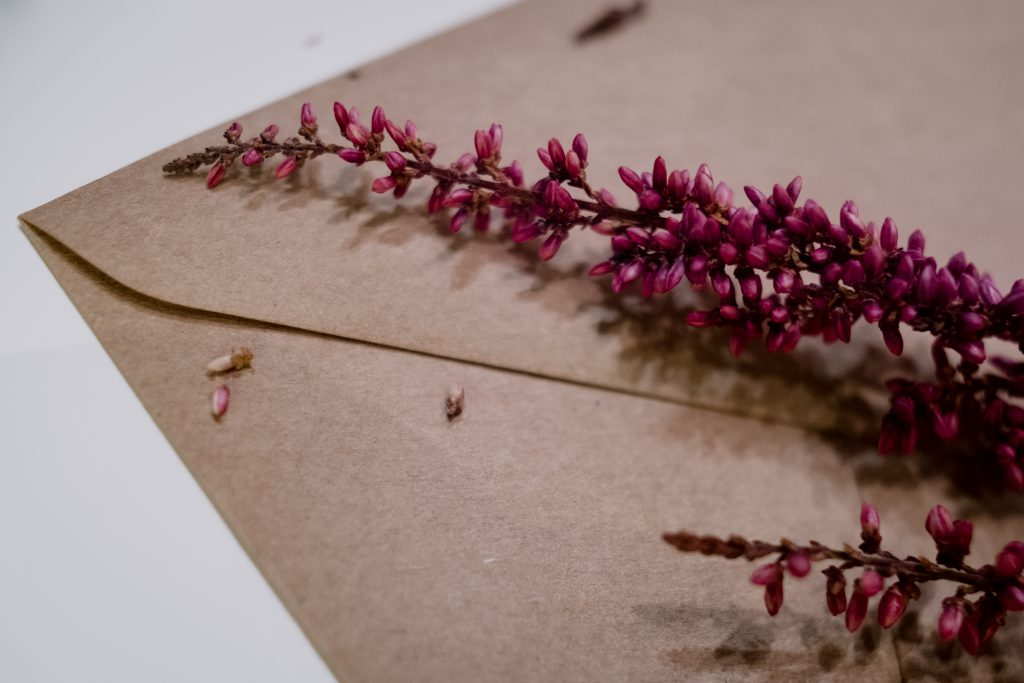 Craft envelope with dried flowers closeup - free stock photo