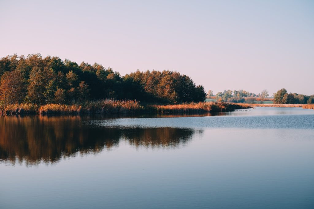 Autumn afternoon at the lake - free stock photo