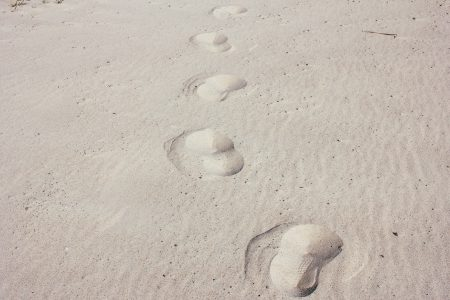 Footsteps in the sand - free stock photo